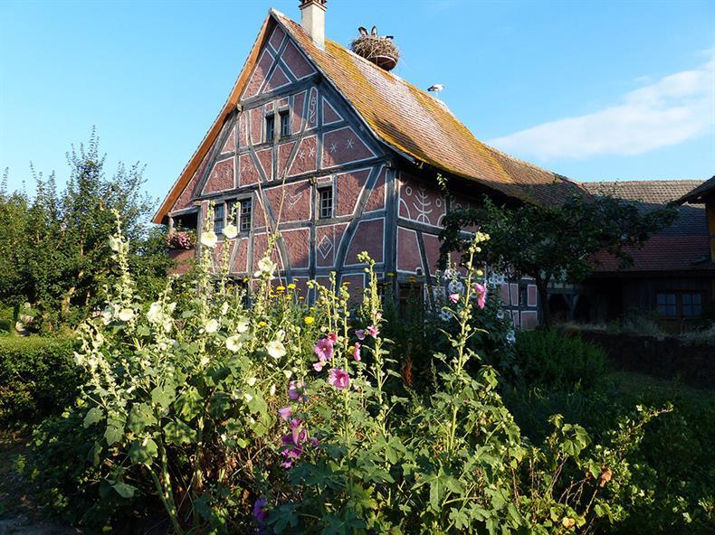 Bâti traditionnel©Ecomusée d'Alsace.JPG