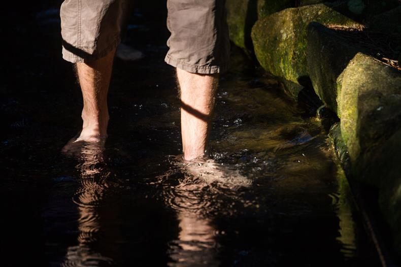 apps.tourisme-alsace.info/photos/kaysersberg/photos/lac-blanc-aventure-sentier-pieds-nus-vosges-6.jpg