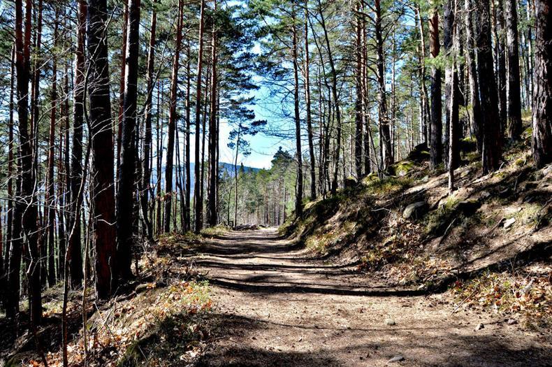 OT Vallée de Kayserberg