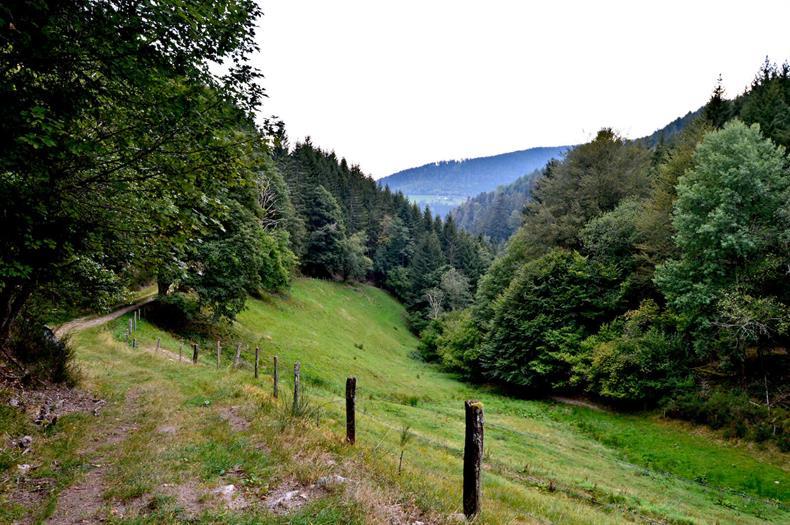 Office de tourisme de la vallée de Kaysersberg