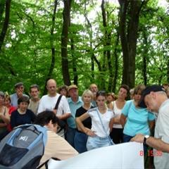 - © Un village celte avait choisi le Britzgyberg pour lieu d'implantation.Photo de l'Office de Tourisme