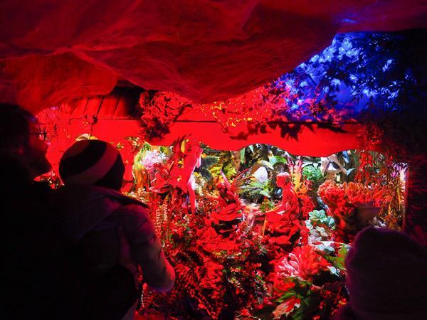 La Grotte aux Lucioles