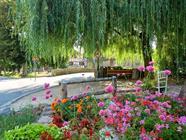 Hirsingue, commune classée 4 fleurs