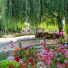 - © Hirsingue, commune classée 4 fleurs