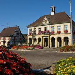 - © Mairie d'Hirsingue richement fleurie