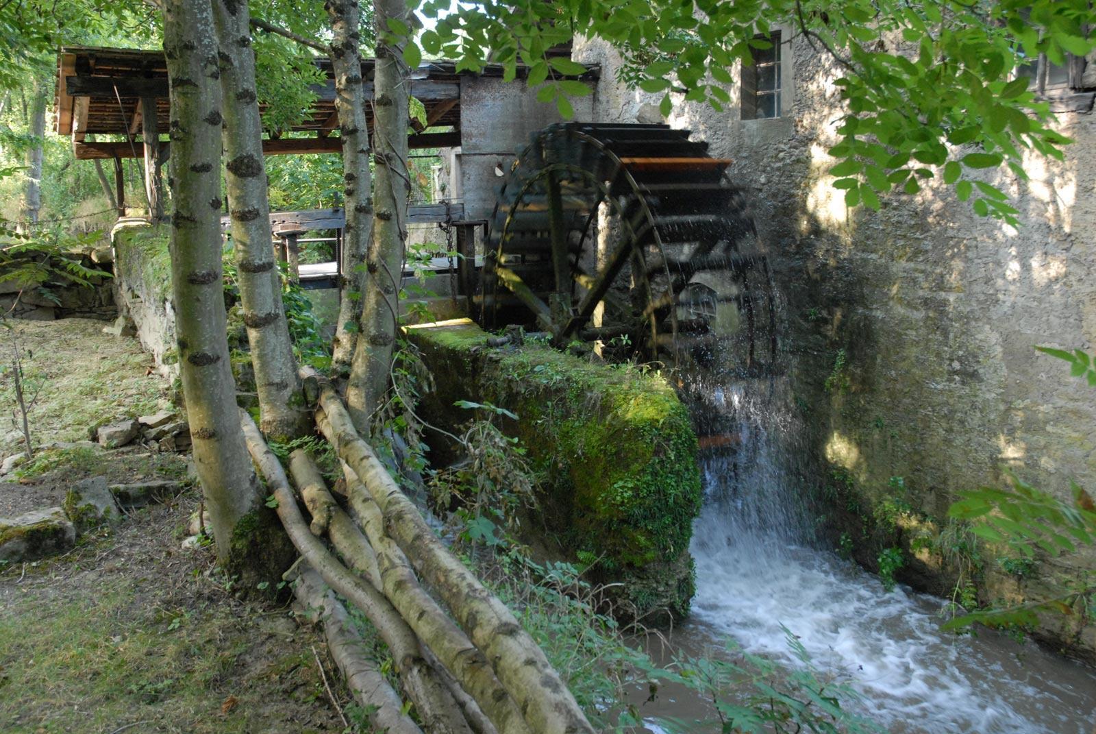 Niedere Mühle von Walheim