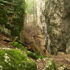 Grotte des Nains de Ferrette