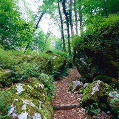 - © Sentier de la Grotte des nains