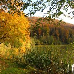 - © Lac de Lucelle