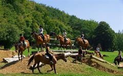 Zum Blaue equestrian farm