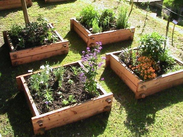 Courtil de St Fiacre Medieval Garden