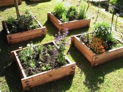 Mittelalterlicher Garten Le Courtil de St Fiacre