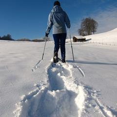 Winkel snowshoeing