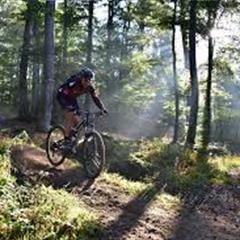 Mountain biking and La schwalmala route - © Office de Tourisme du Sundgau