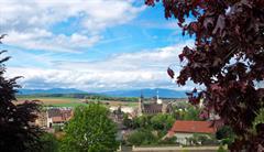 Randonnée pédestre sur les Hauteurs d'Altkirch