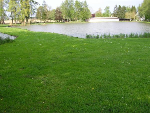 Teich des Ried