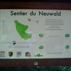 - © Sentier du Neuwald,  Wolfersdorf