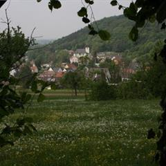 Tagolsheim - © OT Sundgau