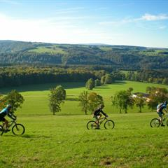 Mountain biking on the heights of Winkel, Alsatian Jura.