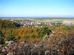 Kulturerbe-Pfad in Koestlach