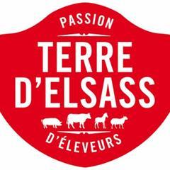 Logo Terre d'Elsass - © terre-elsass.fr
