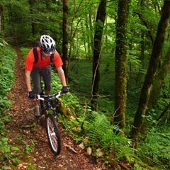 - © Path along the Lucelle, Alsatian Jura