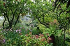 """Garten """"Jardin de Brigitte"""""""
