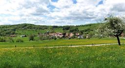 Village de Bendorf au printemps   ©VIanney-MULLER