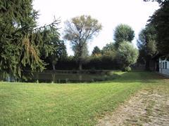 Les étangs de Hochstatt
