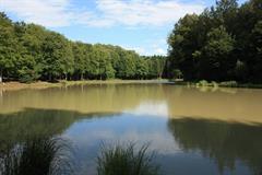 L'étang du Krummweiher
