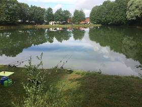 L'étang de Magny