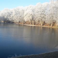 L'étang de Magny en hiver
