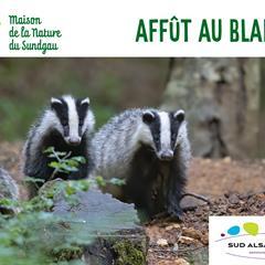 Balade nature dans les vergers - © Office de Tourisme du Sundgau