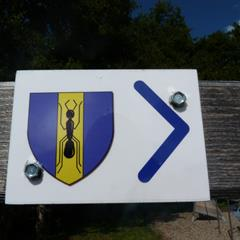 Signposting to follow on the historic Fulleren circuit