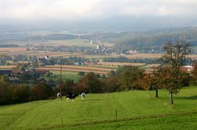 Office de Tourisme du Sundgau