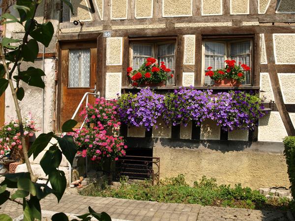 Village de Bouxwiller