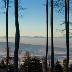 Panorama Wolschwiller vers le Jura alsacien
