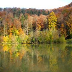 Lac de Lucelle (2) - © Vianney Muller