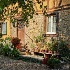 Village d'Illtal (2) - © Vianney MULLER