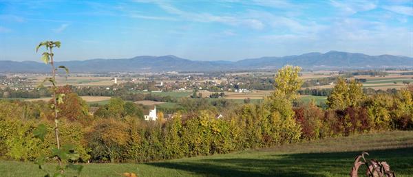 Panorama Vosges ; Hauenwald