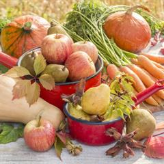 Cuisine d'automne