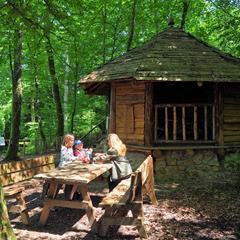 Durmenach picnic area - © Vianney MULLER