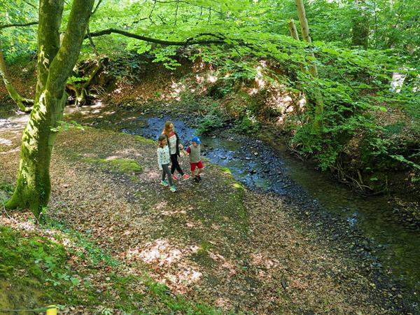 The Niesbach flowing right next door