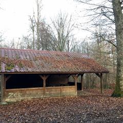 Abri forestier de Pfetterhouse - © @ Vianney MULLER