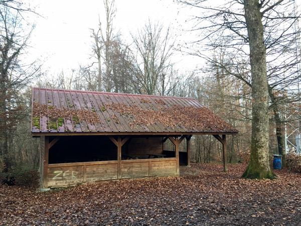 Abri forestier de Pfetterhouse