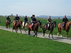 Écurie des Prés equestrian centre Knoeringue
