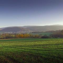Piscine naturelle - © © Chambre d'hôtes Cœur de Sundgau