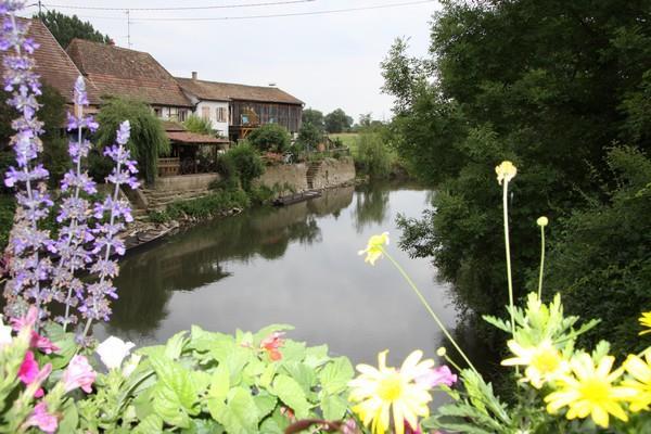 Proximité rivière - Ferme du pays d'Eaux