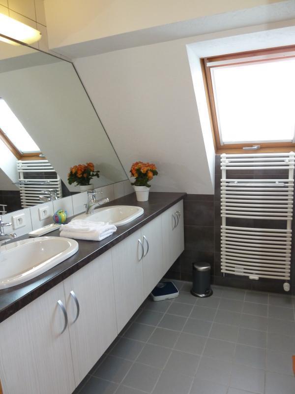 salle de bains avec douche et plan vasque - © D. Spatz
