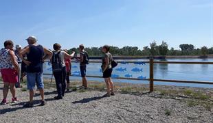 Belvédère touristique avec vue sur la passe à poissons